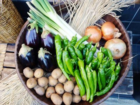 活力あふれる食事をご提供し、健康と元気をサポートします。