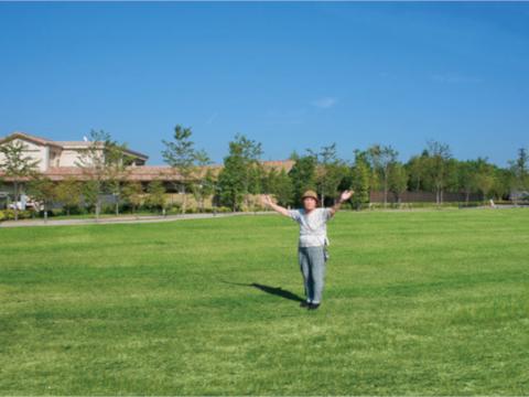 広大な芝生広場や庭園